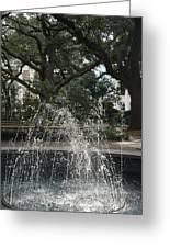 Fountain And Trees In Savannah, Georgia Greeting Card