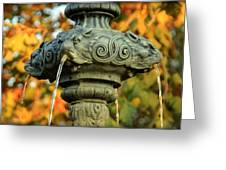 Fountain At Union Park Greeting Card
