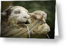 Fountain Detail Greeting Card