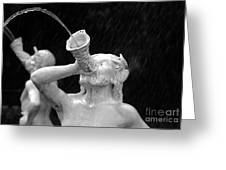 Fountain Dreams Greeting Card