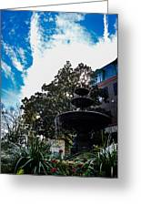 Fountain In Downtown Charleston Greeting Card