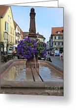 Fountain In Wertheim, Germany Greeting Card