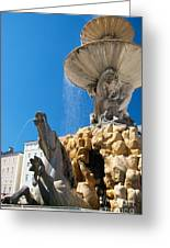 Fountain Ll Greeting Card