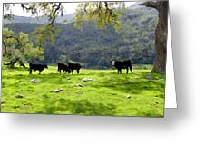 Four Cows At Nojoqui Ranch Greeting Card