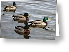 Four Green Heads Greeting Card