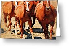 Four Horses Running Greeting Card