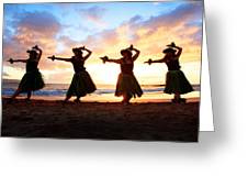 Four Hula Dancers At Sunset Greeting Card by David Olsen