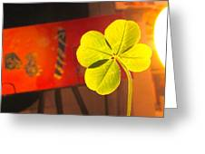 Four Leaf Clover In Studio 1 Greeting Card