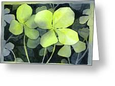 Four Leaf Clover Watercolor Greeting Card