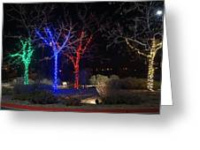 Four Lighted Trees Greeting Card