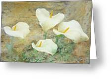 Four Lilies Greeting Card