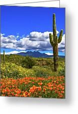 Four Peaks And Poppies, Springtime, Arizona Greeting Card