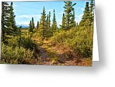 Four Wheeler Trail - Richardson Highway Greeting Card