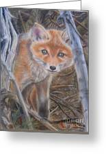Fox Cub Greeting Card