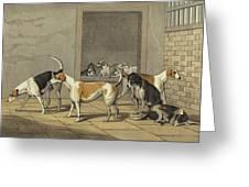 Fox Hounds Greeting Card