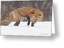 Fox Hunt Greeting Card