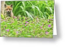 Fox In The Garden Greeting Card