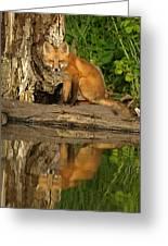 Fox Reflection Greeting Card