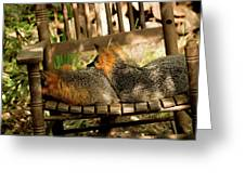 Foxes In A Chair Greeting Card
