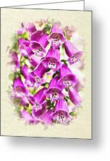 Foxglove Flowers Blank Note Card Greeting Card