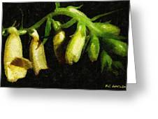 Foxglove On Wood Panel Greeting Card