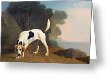 Foxhound On The Scent Greeting Card by George Stubbs