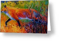 Foxy - Red Fox Greeting Card