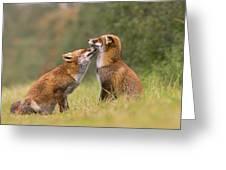 Foxy Love- Kiss Greeting Card