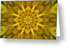 Fractal 10 Greeting Card