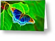 Fractal Butterfly Greeting Card