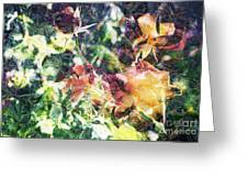 Fractal Flowers Greeting Card