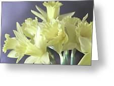 Fragile Daffodils Greeting Card