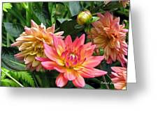 Fragrant Grouping Greeting Card