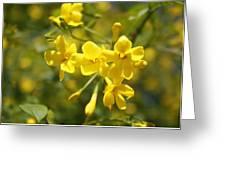 Fragrant Yellow Flowers Of Carolina Jasmine Greeting Card