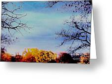 Framed Fall Trees Greeting Card