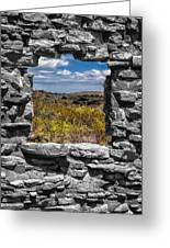 Framed In Black And White Greeting Card