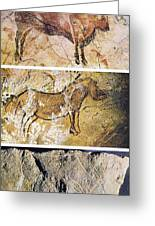 France And Spain: Cave Art Greeting Card