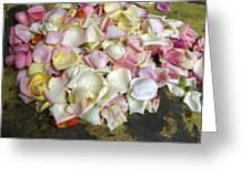 France Flower Petals, Still-life Greeting Card