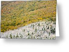 Franconia Notch State Park - White Mountains Nh Usa Autumn Greeting Card