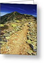Franconia Ridge Alpine Trail Greeting Card