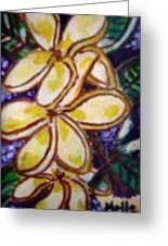 Frangipani In The Tropics  Series 1 Greeting Card