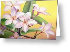 Frangipanier Greeting Card by Muriel Dolemieux