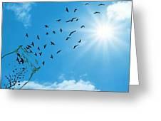 Free Bird Greeting Card