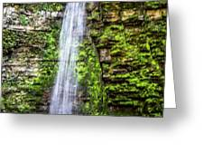 Free Fall Greeting Card by William Norton
