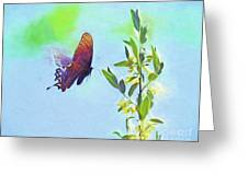 Free To Fly - Butterfly In Flight Greeting Card