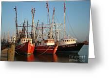 Freeport Shrimper Fleet Greeting Card