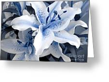 Freeze Greeting Card by Shelley Jones