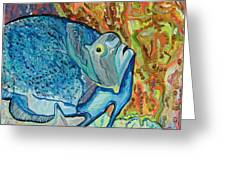 French Angle Fish Greeting Card