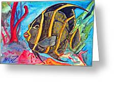 French Kiss-juvenile French Angelfish Greeting Card by Kelly     ZumBerge