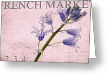 French Market Series A Greeting Card
